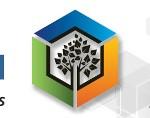 Profissionais da informação reúnem-se em Beja na busca de soluções para problemas comuns