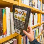 11 de março: proposta do Dia Nacional das Bibliotecas Públicas